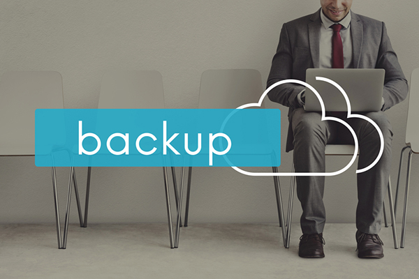 Data Back-up Facility