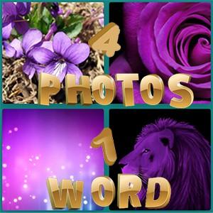 4 Photos 1 Word