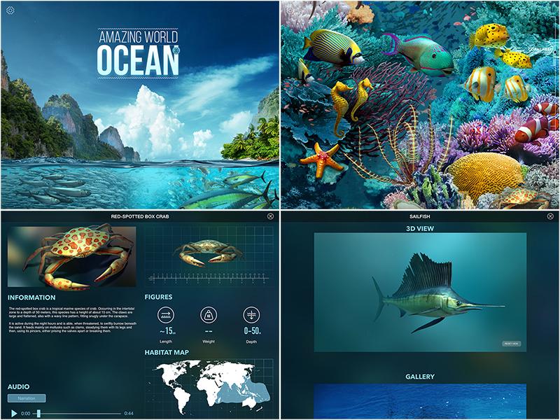 Amazing World OCEAN