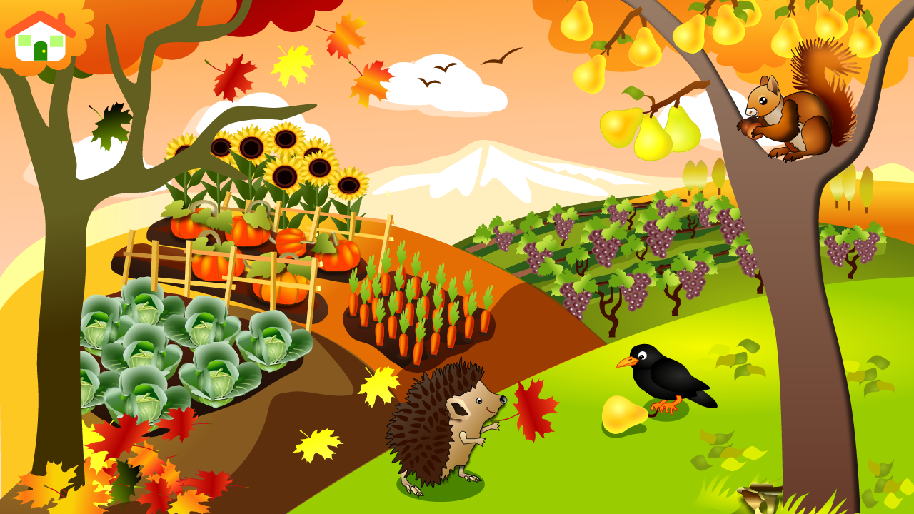 Animal Seasons Touch