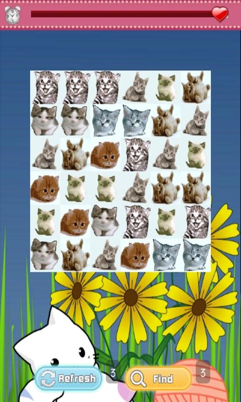 Baby Kitten Games