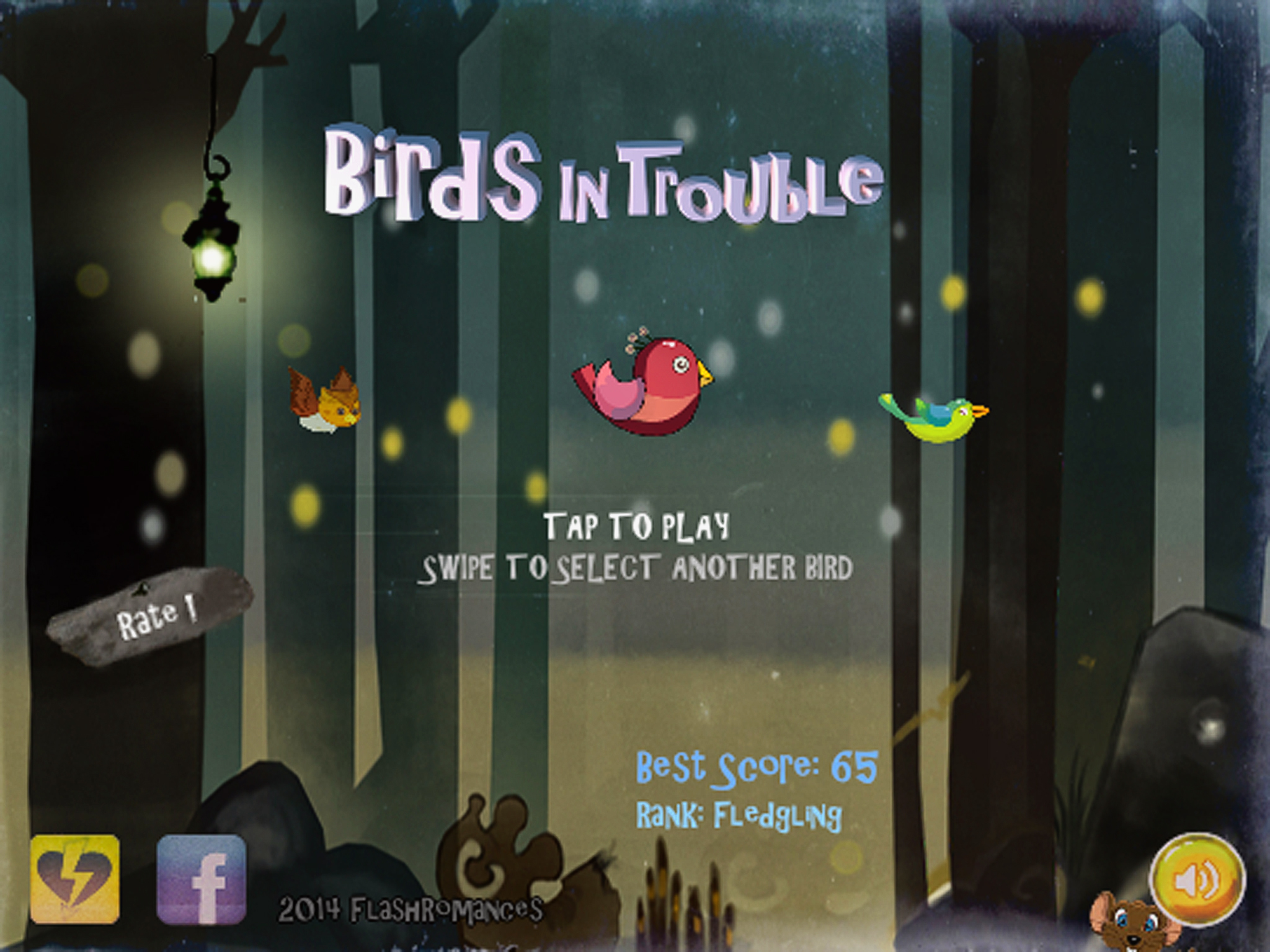 Birds In Trouble