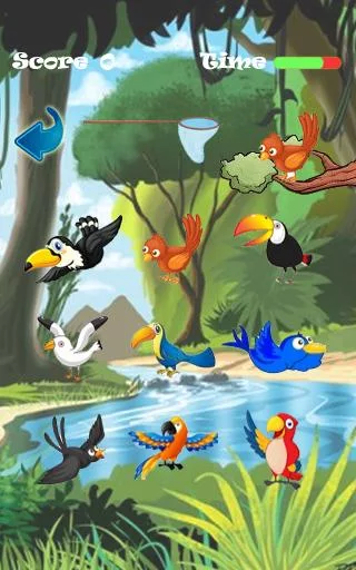 Capture the birds for kids