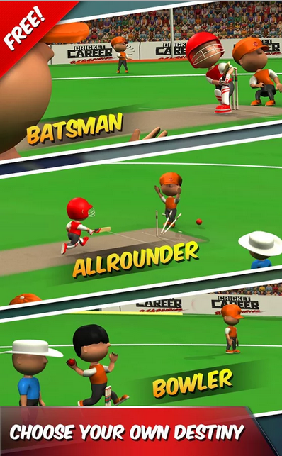 Cricket Career Biginnings 3D