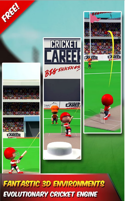 Cricket Career Biginnings 3D
