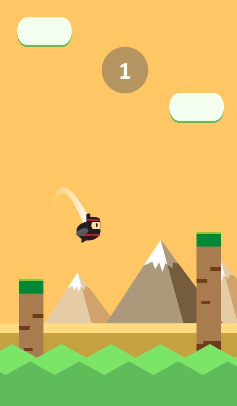 Fly Ninja