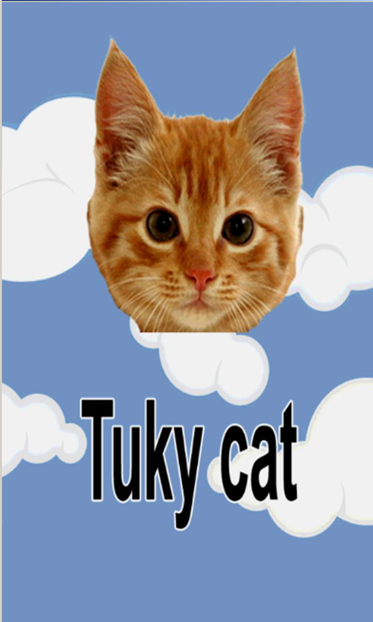 Flying Tukky Cat