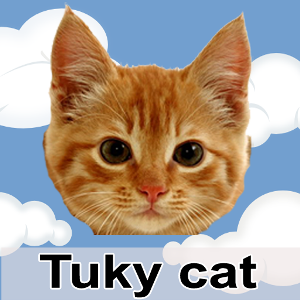 Flying Tukky Cat