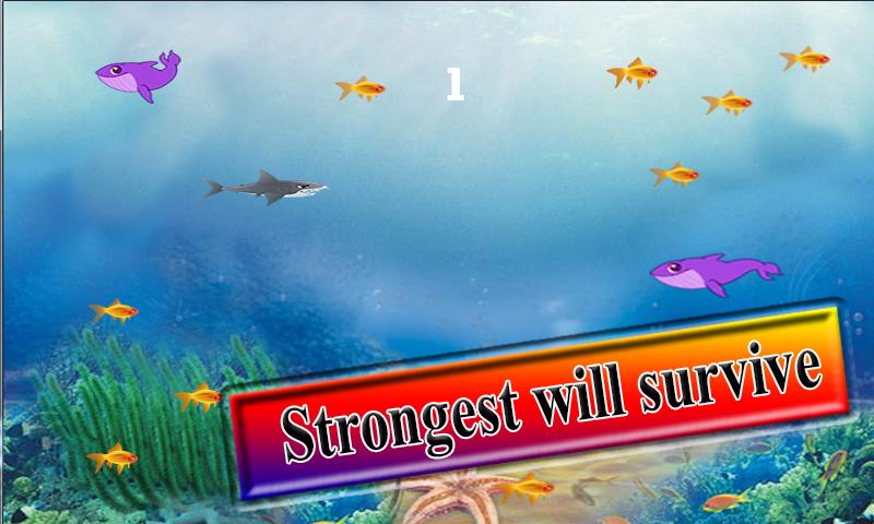 Hunger Shark Revolution