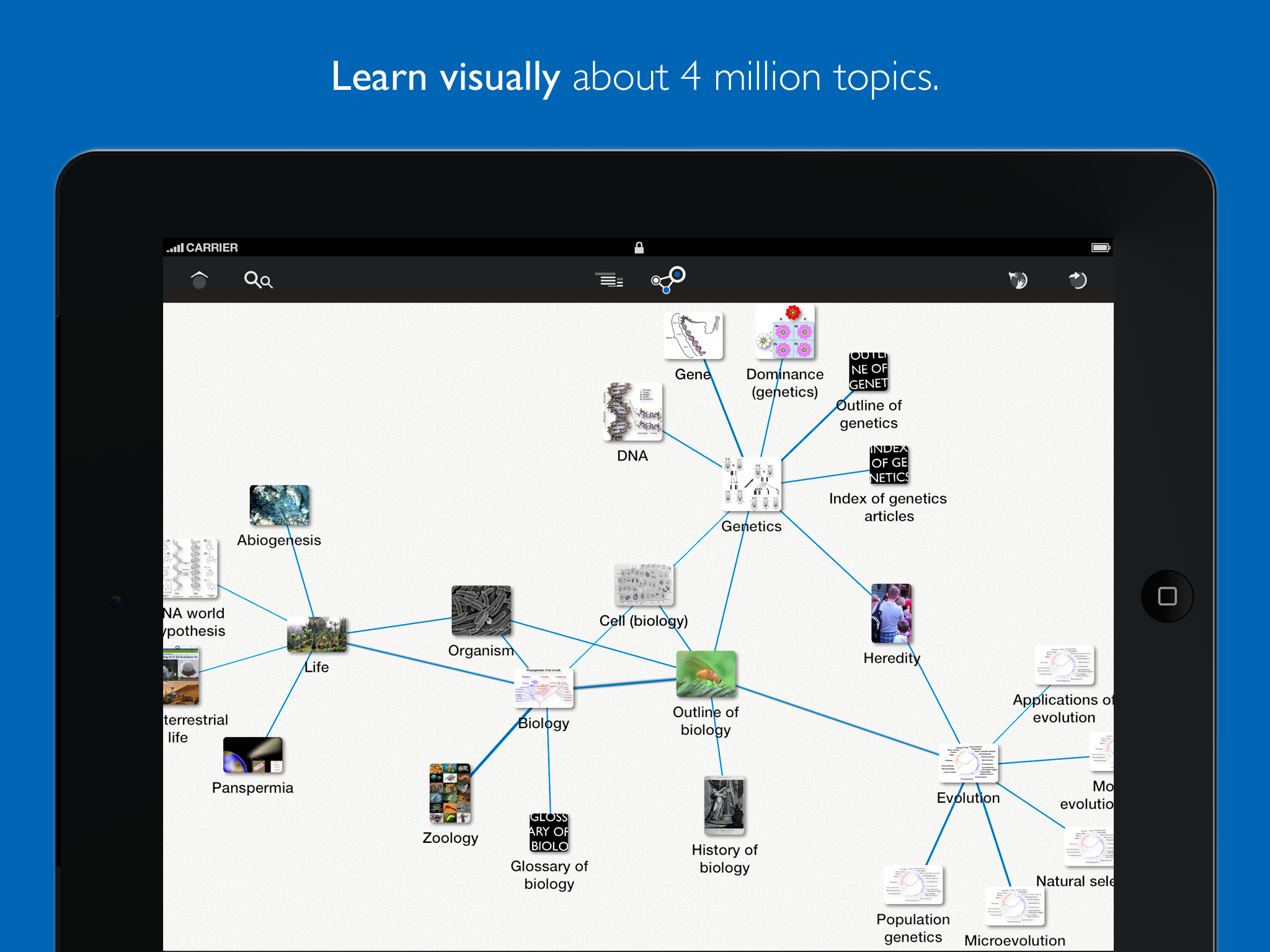 Learn Discovery – Mindmap of Wikipedia