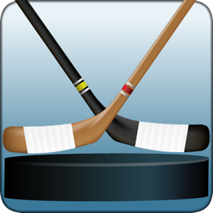 Play Macth Hockey
