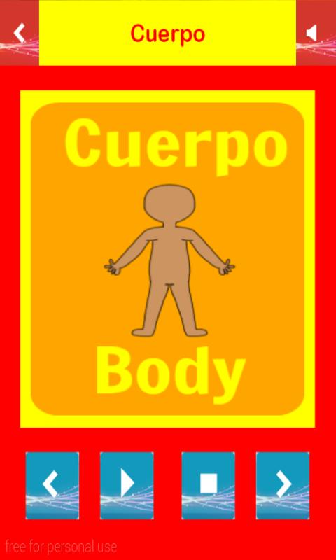 Study spanish vocabulary