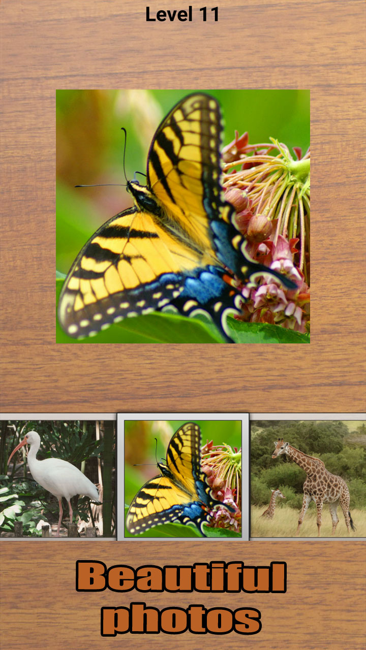 Swipe Puzzle Animals