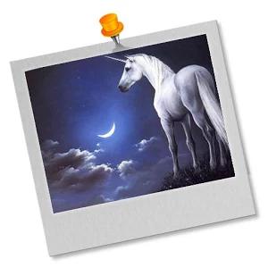 Unicorns Puzzles for girls