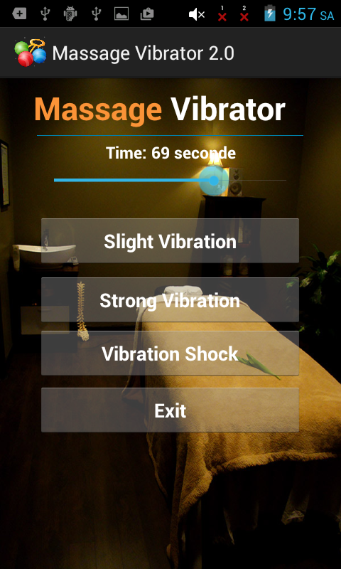 Vibrate Massager Body