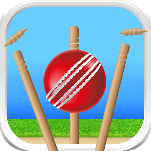 Defend the Wicket - Cricket