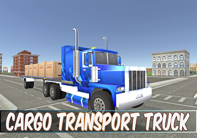 Cargo Transport Truck Driver
