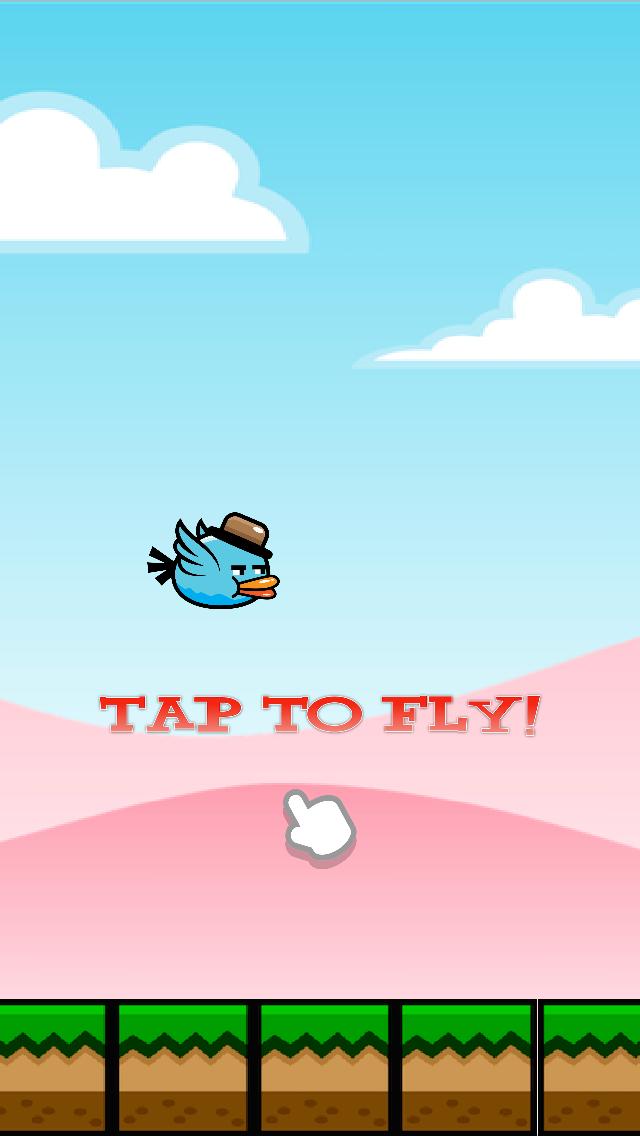 Baby Bird flies in the sky