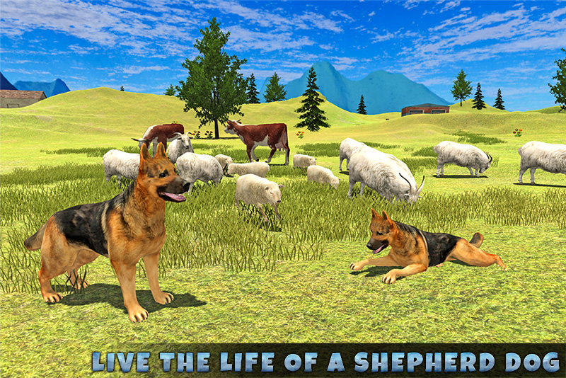 Real Shepherd Dog Simulator