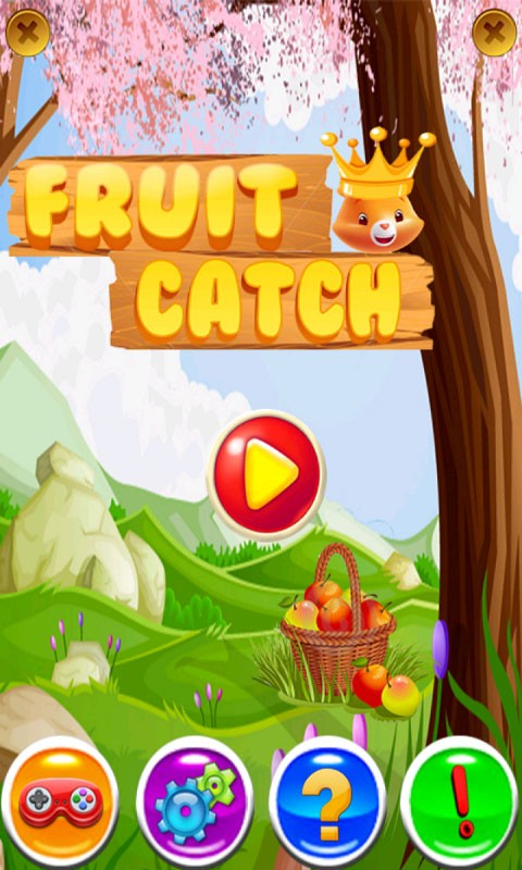 Fruits Catch