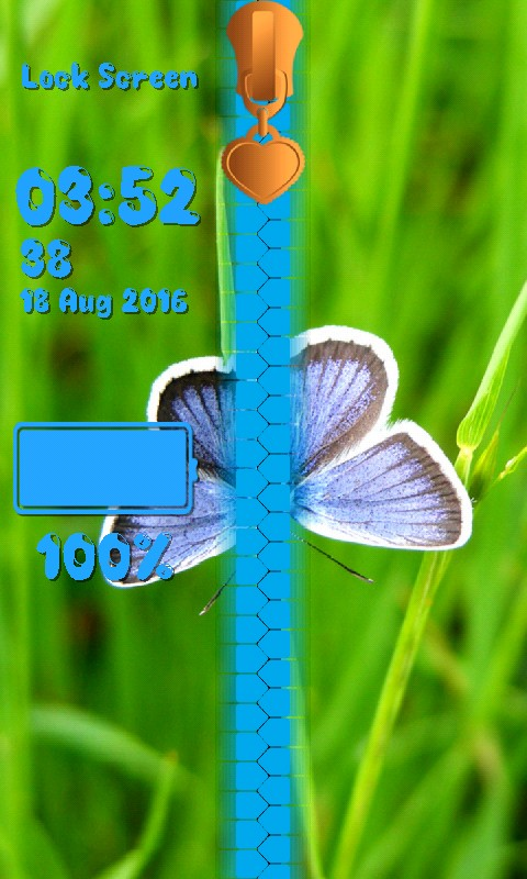 Butterfly Zipper Lock Screen