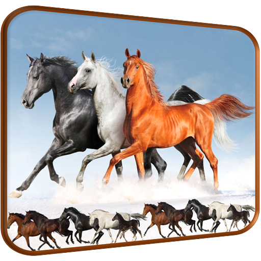 Horse Racing Pro