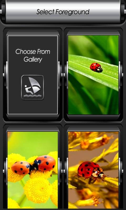 Ladybug Zipper Lock Screen