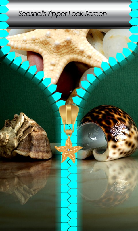 Seashells Zipper Lock Screen