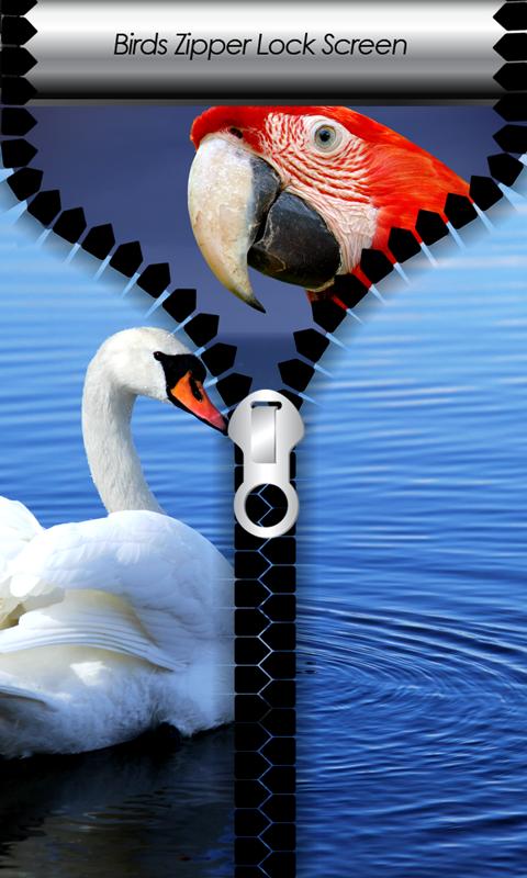 Birds Zipper Lock Screen