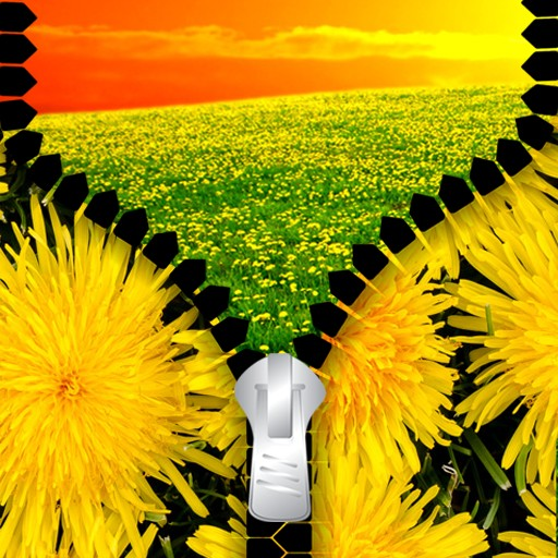 Dandelion Zipper Lock Screen