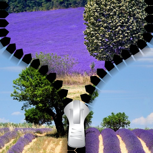Lavender Zipper Lock Screen