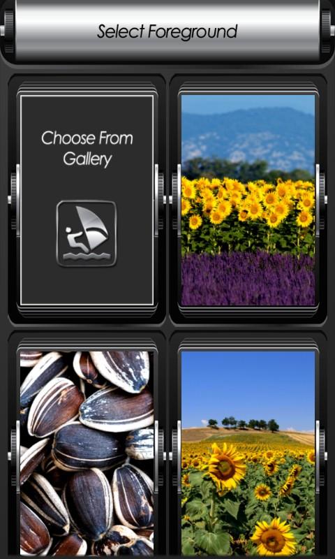 Sunflower Zipper Lock Screen