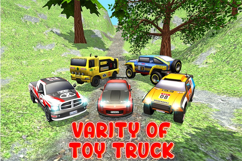 Toy Truck Offroad Rally 2016