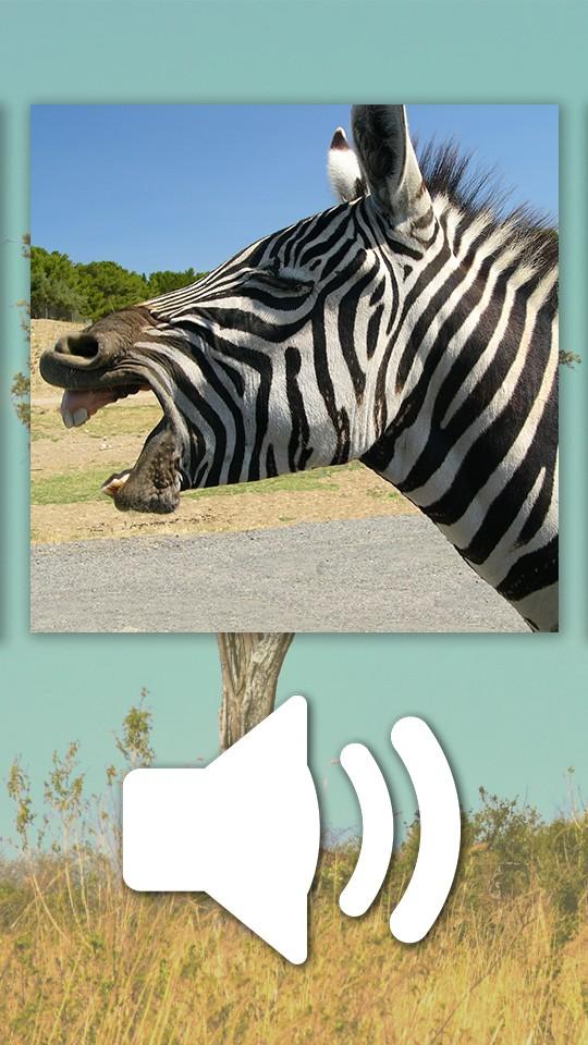 Animals Puzzle Zoo free