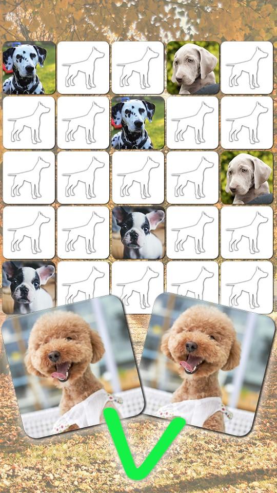Cute Dog Games free