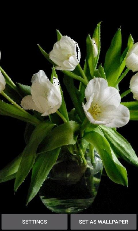 Green Leaf Flowers LWP