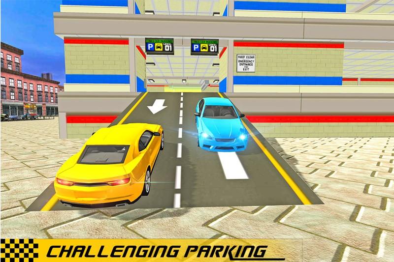 Mall Parking Lot: Car 2017