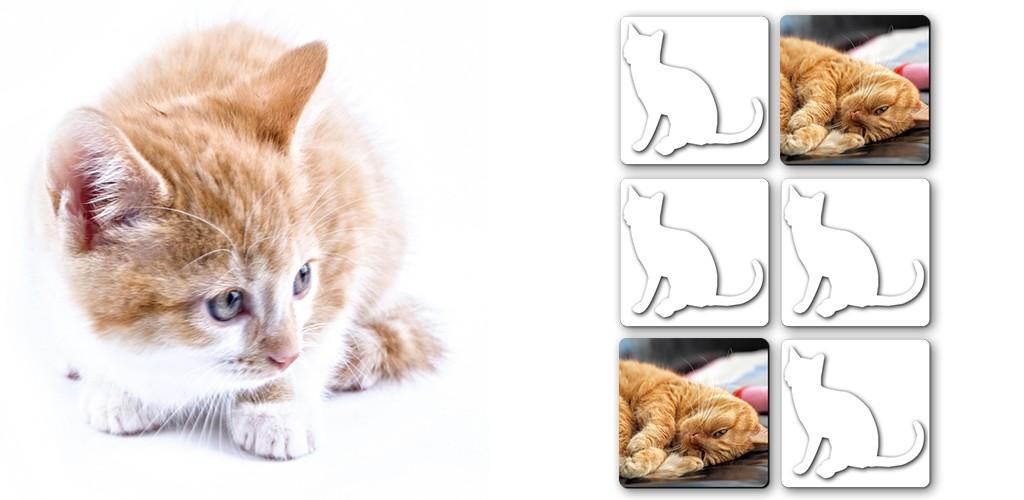 Memory Games free: Cute Cats