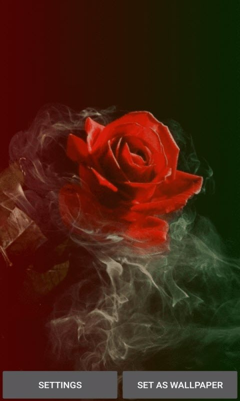 Smoky Red Rose LWP