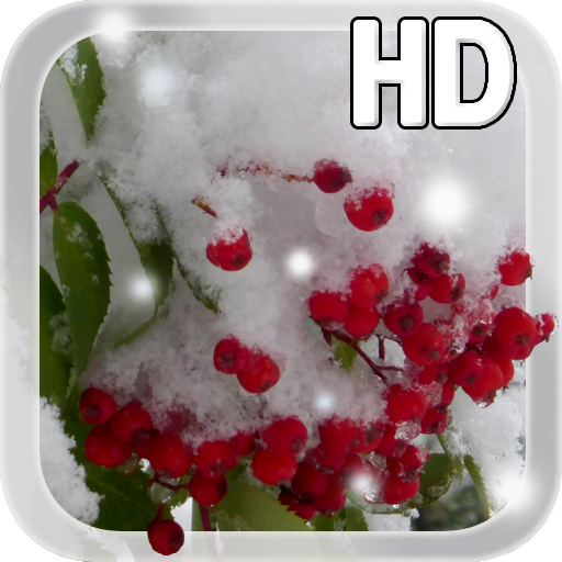 Winter Berry Live Wallpaper