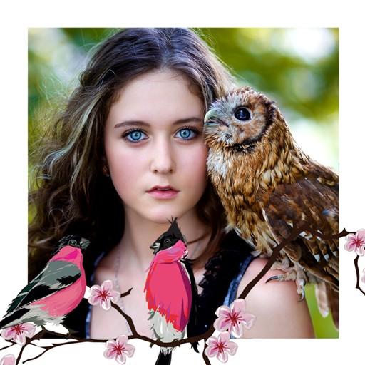 Birds Photo Collage