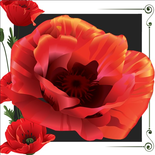 Poppy Photo Collage
