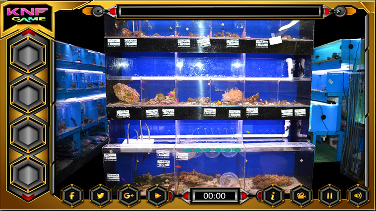Can You Escape From Fish Shop