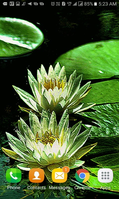Green Lotus Live Wallpaper