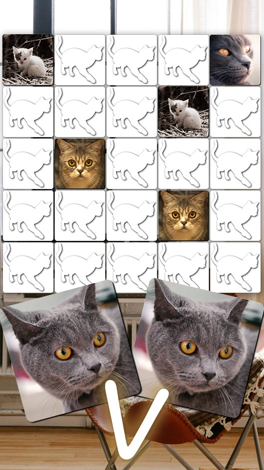 Kitty Cat Puzzles