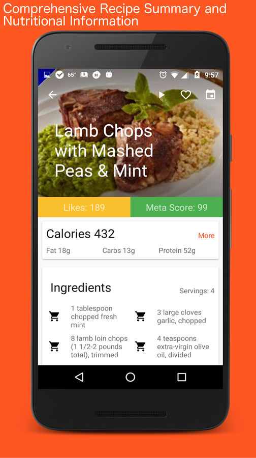 Paleo CookBook (Primal Recipes)