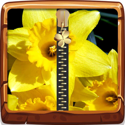 Daffodils Zipper Lock Screen