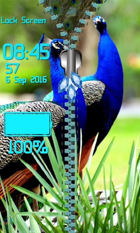 Peacock Zipper Lock Screen