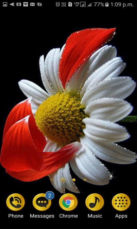 Red Leafs Flower LWP
