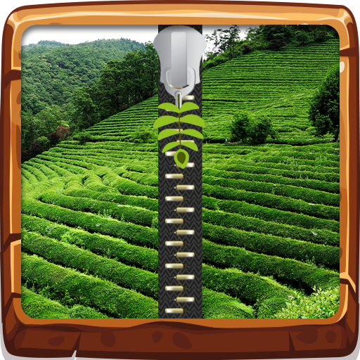 Tea Field Zipper Lock Screen